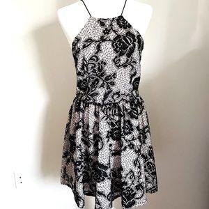 BEBE Black Lace Mini Dress